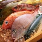 pesce 2